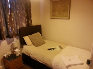 City Park Guest House Single Room En-suite -1